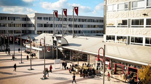 Impression mémoire et flyer à Villeneuve d'Ascq
