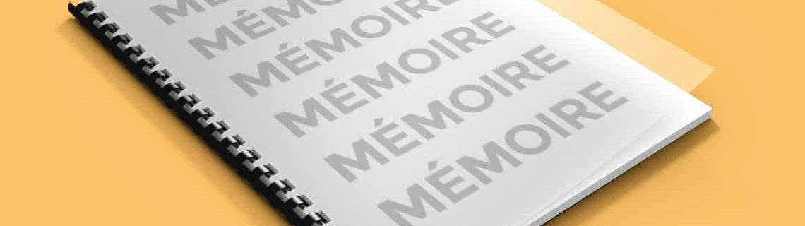 Numérotation des pages du mémoire